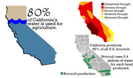 State water used on thirsty produce